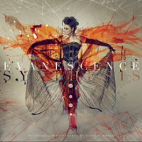 More Evanescence Reviews...